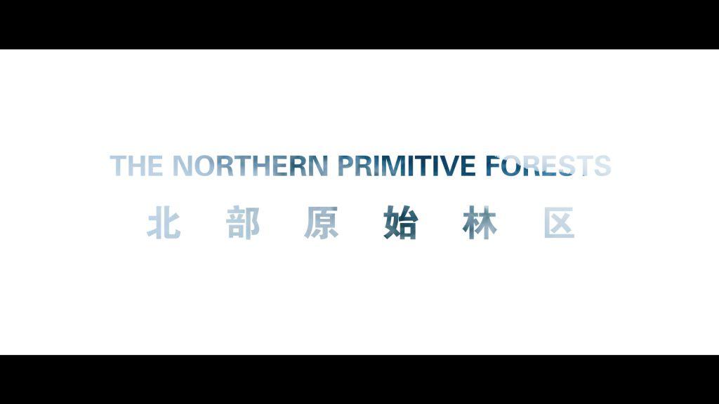 内蒙古北部原始林区推介片